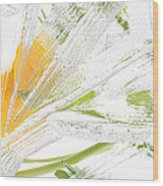 Frozen Spring Vii Wood Print