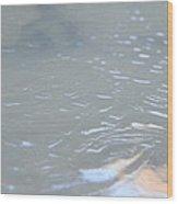 Frozen Tide. Wood Print