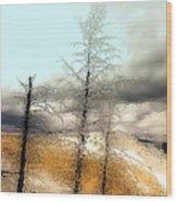 Frozen Time II Wood Print