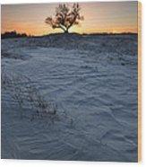 Frozen Tree Of Wisdom Wood Print