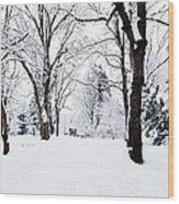 Frozen Tree On A Snow Field Wood Print
