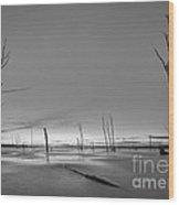 Frozen Trees Bw Wood Print