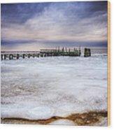 Frozen Tundra Of Long Island Wood Print