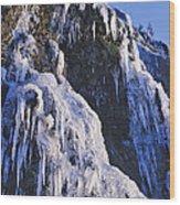 Frozen Waterfall On Oregon Central Coast Wood Print