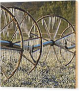 Frozen Wheels Wood Print