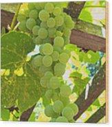 Fruit Of The Vine - Garden Art For The Kitchen Wood Print