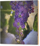 Fruit Of The Vine Wood Print by Donna Kennedy