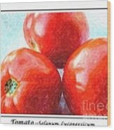 Fruit Of The Vine - Tomato - Vegetable Wood Print