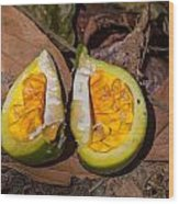 Fruit On The Forest Floor Wood Print