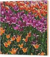 Fruity Tulips Wood Print
