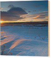 Ft Collins Snow Sparkles Wood Print by Preston Broadfoot