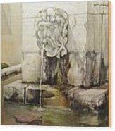 Fuente de San Isidoro Wood Print