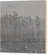 Fugue Wood Print