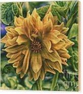 Full Bloom Wood Print