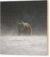 Blizzard Bear Wood Print