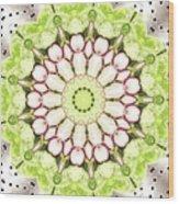 Full Frame Shot Of Radish And Cucumber Wood Print