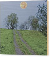 Full Moon And A Country Road Wood Print