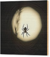 Full Moon And Spider Wood Print
