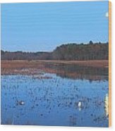 Full Moon At Great Meadows National Wildlife Refuge Wood Print
