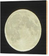 Full Moon Axis Wood Print by Debbie Nester
