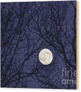 Full Moon Bare Branches Wood Print