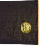 Full Moon Behind The Trees Wood Print