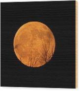 Full Moon Dec.10.2011 Wood Print