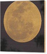 Full Moon II Wood Print
