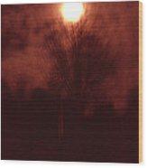 Full Moon Midnight In Garden Denmark Wood Print