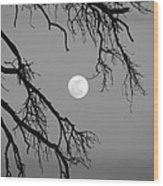 Full Moon Old Snag Wood Print