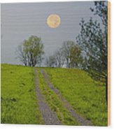 Full Moon On The Rise Wood Print