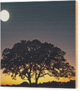 Full Moon Over Silhouetted Tree Wood Print