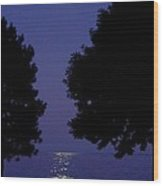 Full Moon Rise Wood Print
