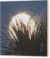 Full Moon Through The Palms Wood Print