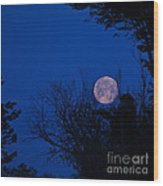 Full Moon With Trees Wood Print