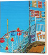 Fun Slide Wood Print