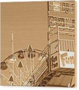 Fun Slide Sepia Wood Print