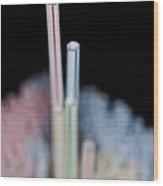 Fun With Straws 1 Wood Print