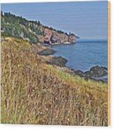 Fundy Bay Coastline Near Cliffs Of Cape D'or-ns Wood Print