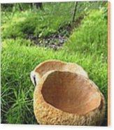 Fungi Cup Wood Print