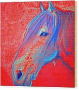 Funky Handsome Horse Blue Wood Print