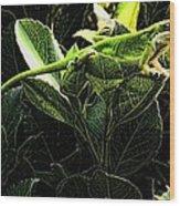 Fractal Nature South Carolina Green Lizard Wood Print