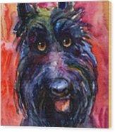 Funny Curious Scottish Terrier Dog Portrait Wood Print by Svetlana Novikova