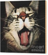 Maine Coon Cat Original Tongue Out Cute Kitty Portrait Funny Cool Animal Making Faces New Pet Gifts Wood Print by Marie Christine Belkadi