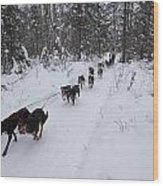 Fur Rondy Races Wood Print