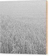 Fur Trees In The Snow Wood Print