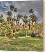 Furnace Creek Inn Wood Print