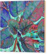 Furry Leaves 1 Wood Print