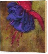 Fuschia Flower Wood Print by Susan Candelario