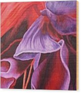 Fuschia Folds Wood Print